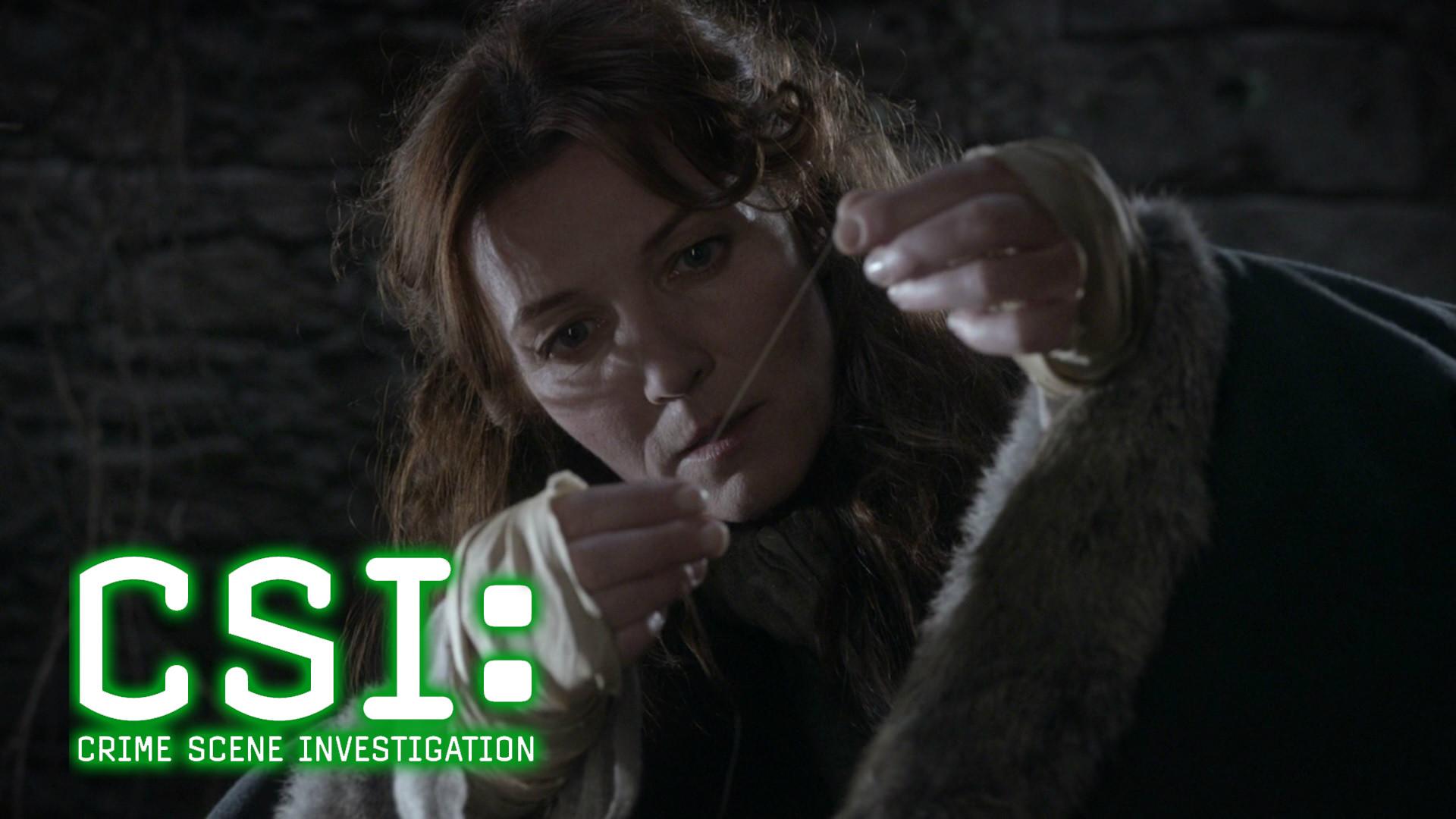 Catelyn Stark in CSI