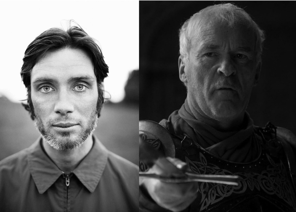 Cillian Murphy as Barristan Selmy